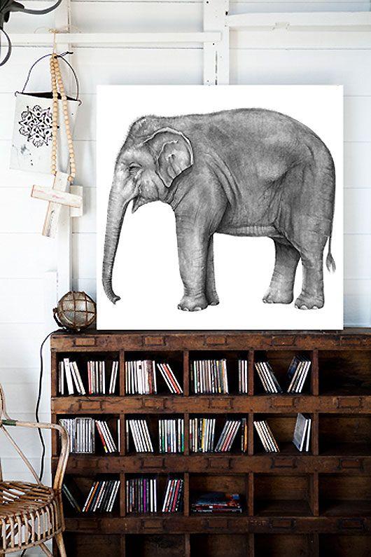 elephant shelf